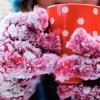 Nem Neden Havanın Kışın Daha Soğuk Yazın Daha Sıcak Hissedilmesine Sebep Olur