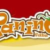 Panino Pizza Bayilik