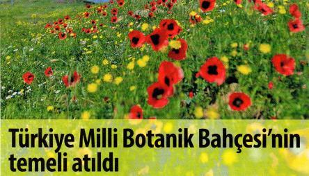 botanik bahcesi