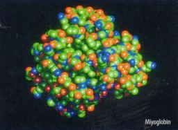 Makromolekuller